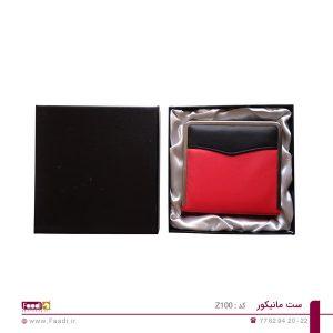 02 - ست مانیکور تبلیغاتی کد Z100